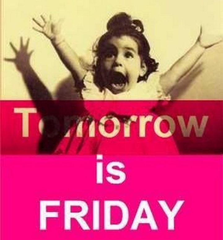 """55 """"Almost Friday"""" Memes - """"Tomorrow is Friday."""""""