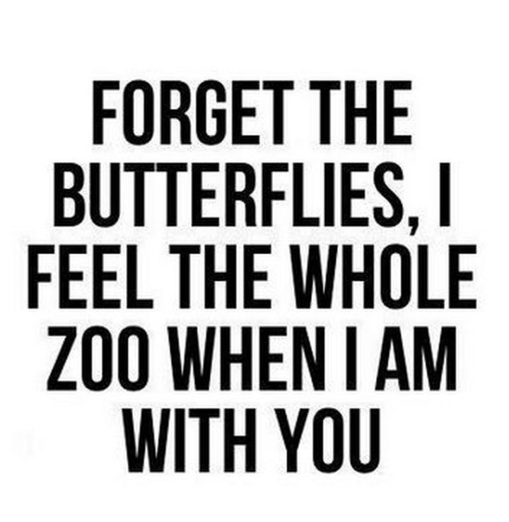 """53 Funny Love Quotes - """"Forget the butterflies, I feel the whole zoo when I am with you."""" - Anonymous"""