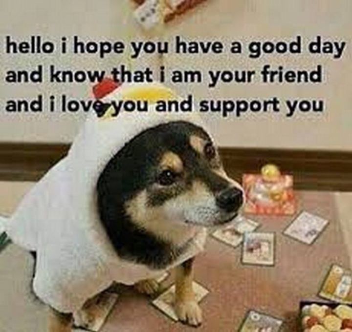 "101 ""Have a Great Day"" Memes - ""Hello, I hope you have a good day and know that I am your friend and I love you and support you."""