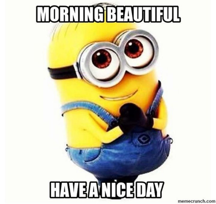 "101 ""Have a Great Day"" Memes - ""Morning beautiful. Have a nice day."""