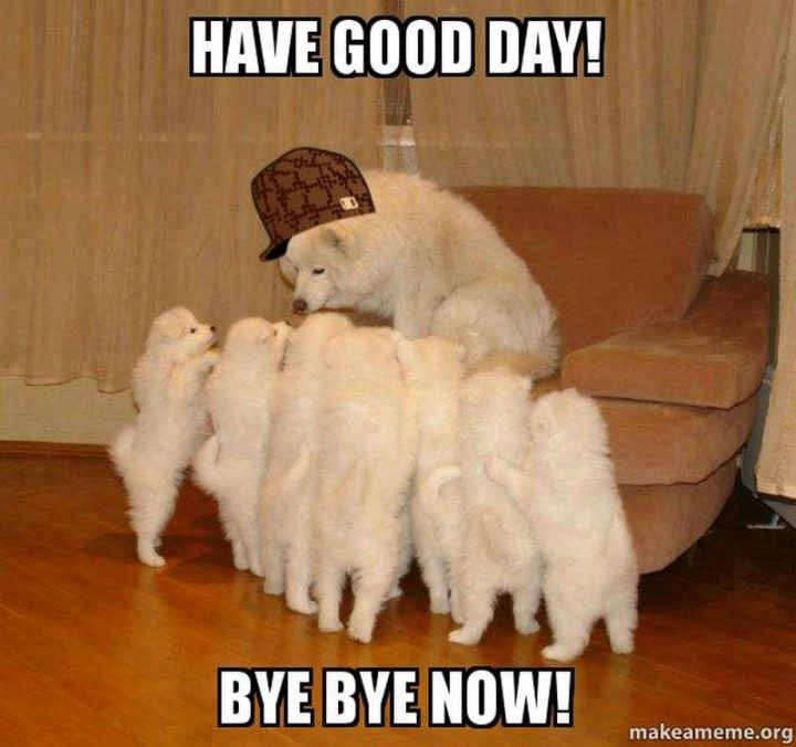 "101 ""Have a Great Day"" Memes - ""Have a good day! Bye-bye now!"