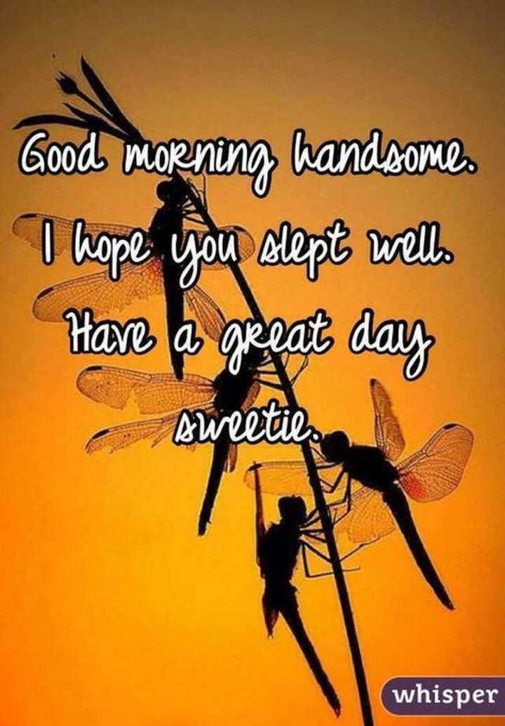 "101 ""Have a Great Day"" Memes - ""Good morning handsome. I hope you slept well. Have a great day sweetie."""