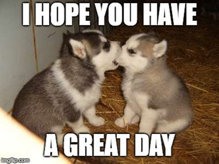 "101 ""Have a Great Day"" Memes - ""I hope you have a great day."""