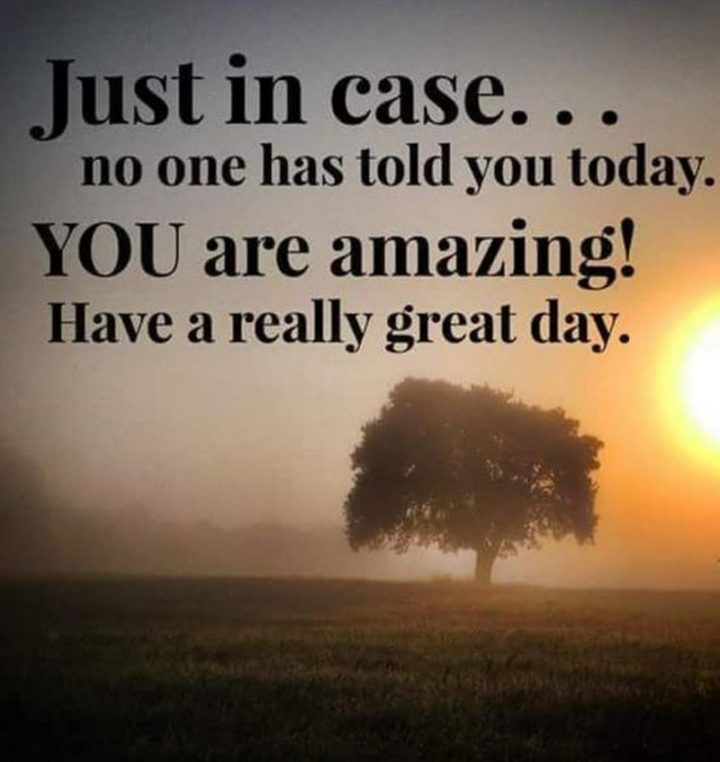 "101 ""Have a Great Day"" Memes - ""Just in case...no one has told you today. You are amazing! Have a really great day."""