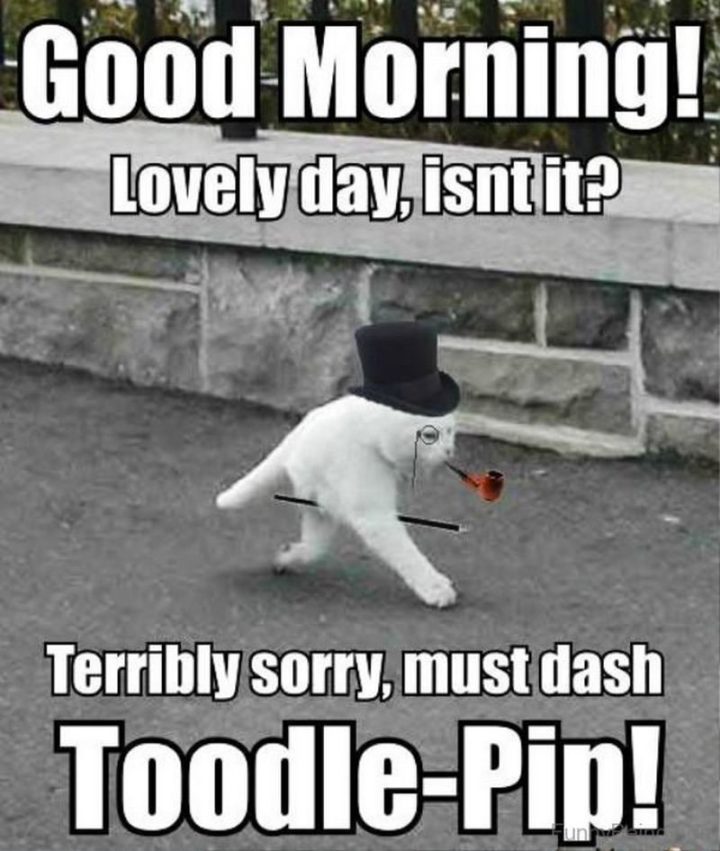 "101 ""Have a Great Day"" Memes - ""Good morning! Lovely day, isn't it? Terribly sorry, must dash. Toodle-pip!"