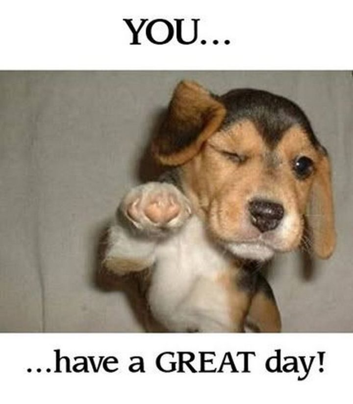 "101 ""Have a Great Day"" Memes - ""You...Have a great day!"""