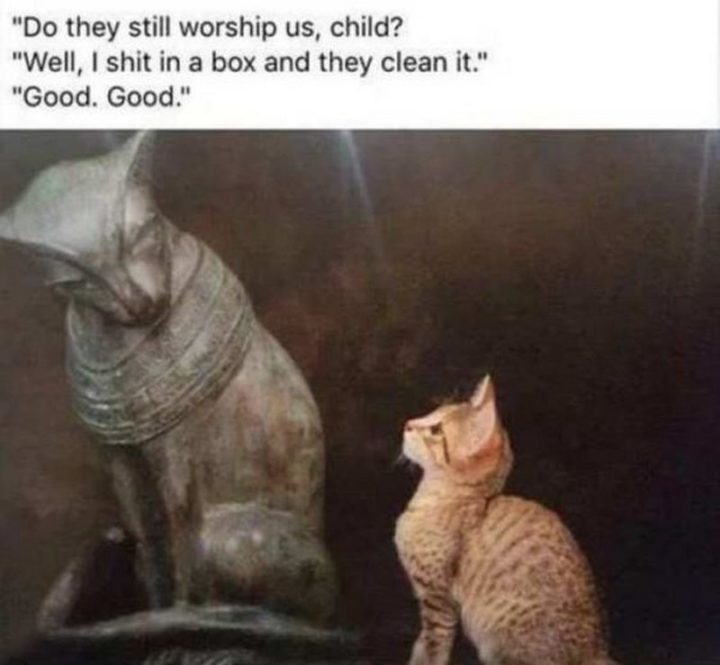"""55 Funny History Memes - """"Do they still worship us, child? Well, I $#!t in a box and they clean it. Good. Good."""""""