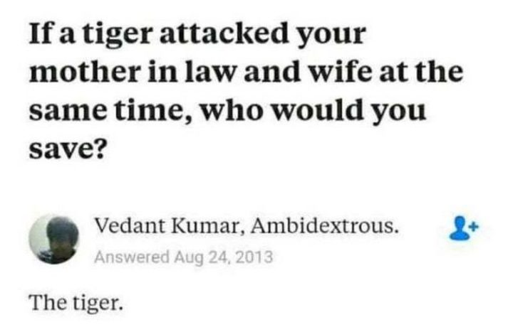 """""""If a tiger attacked your mother in law and wife at the same time, who would you save? The tiger."""""""