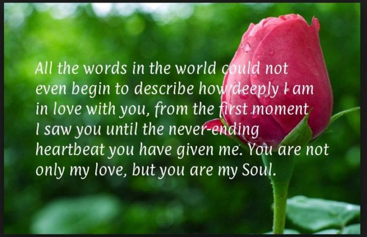 """""""All the words in the world could not even begin to describe how deeply I am in love with you, from the first moment I saw you until the never-ending heartbeat you have given me. You are not only my love, but you are my soul."""""""