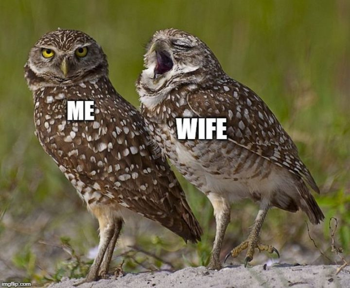 """""""Me VS Wife."""""""