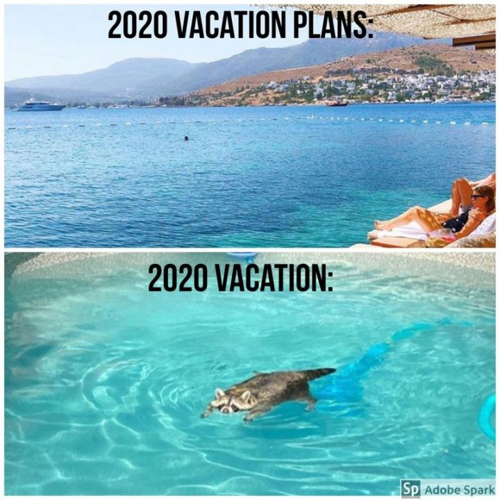 """""""2020 Vacation plans: 2020 Vacation:"""""""
