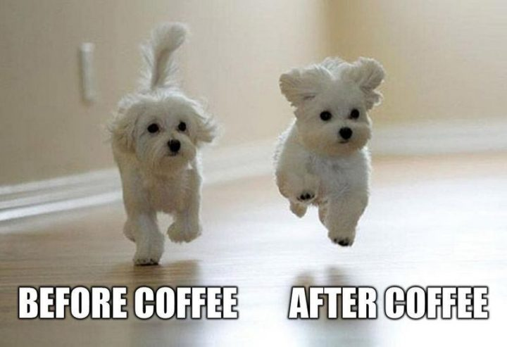 """""""Before coffee VS After coffee."""""""