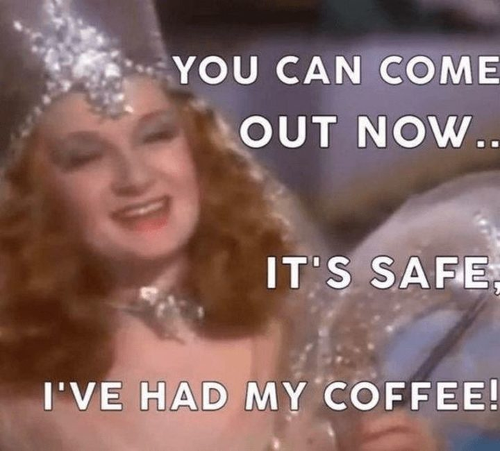 """""""You can come out now...It's safe, I've had my coffee!"""""""