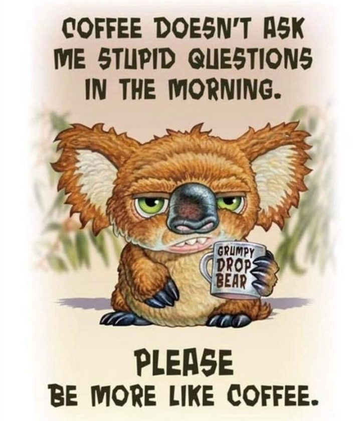 """""""Coffee doesn't ask me stupid questions in the morning. Please be more like coffee."""""""