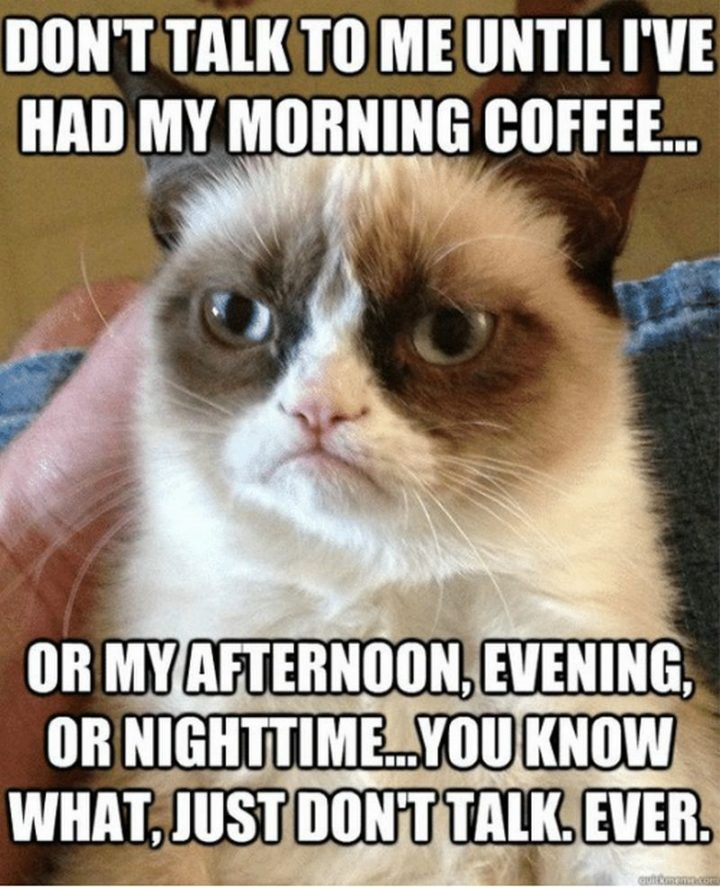 """""""Don't talk to me until I've had my morning coffee...Or my afternoon, evening or nighttime...You know what, just don't talk. Ever."""""""