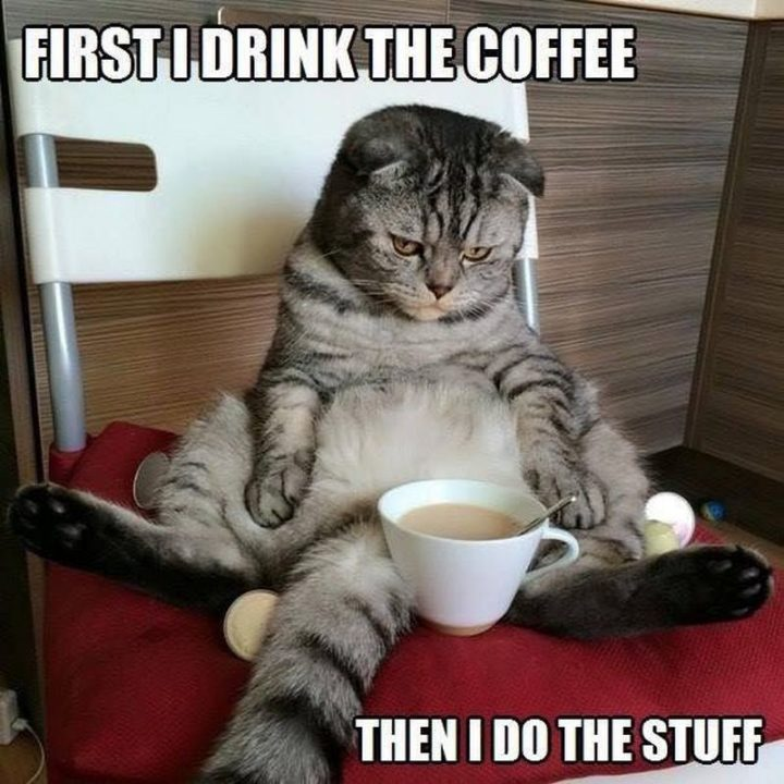 """""""First I drink the coffee, then I do the stuff."""""""