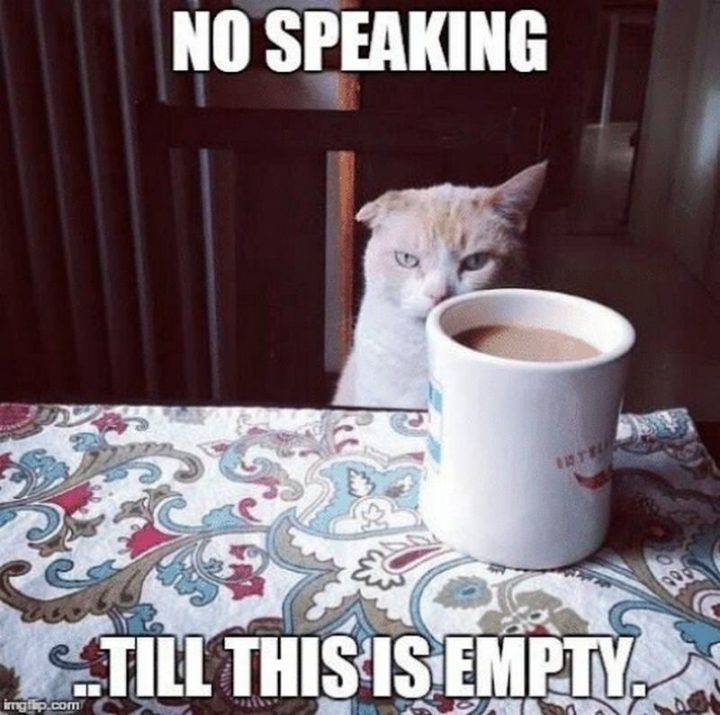 """""""No speaking...Till this is empty."""""""