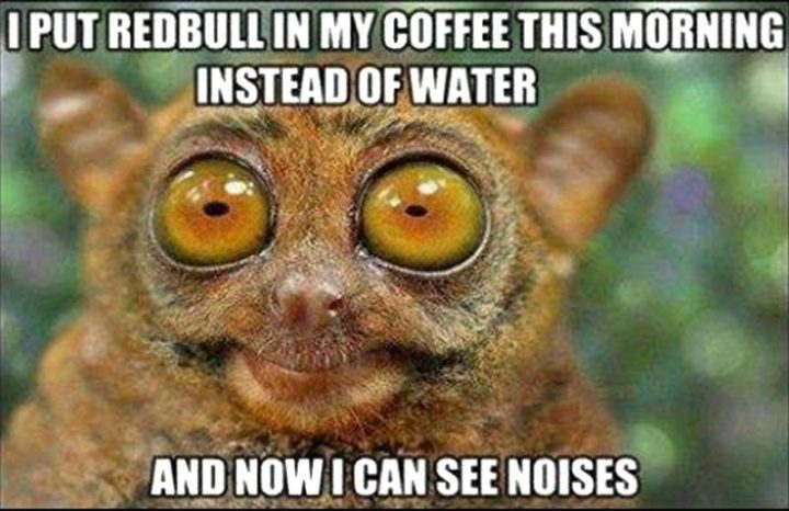 """""""I put Red Bull in my coffee this morning instead of water and now I can see noises."""""""