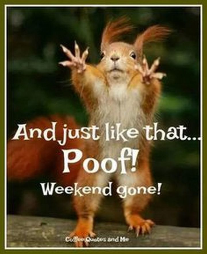 """""""And just like that...Poof! Weekend gone!"""