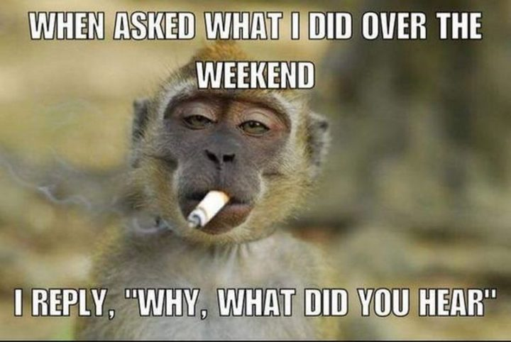 """""""When asked what I did over the weekend, I reply, """"Why, what did you hear?"""""""""""