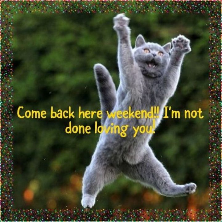 """""""Come back here weekend!! I""""m not done loving you!"""""""