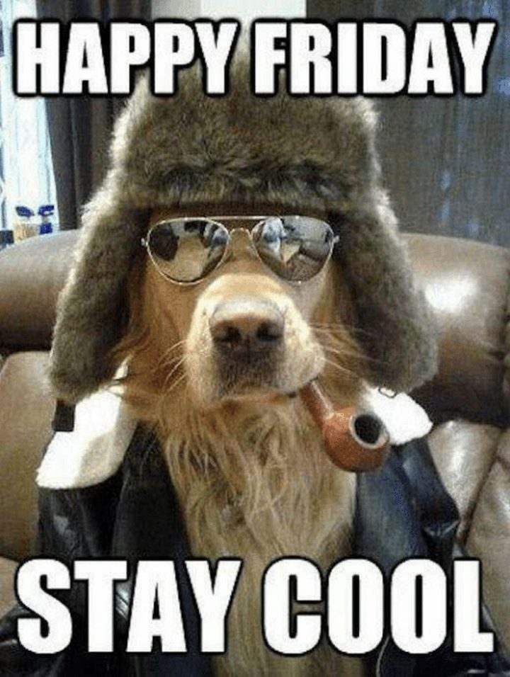 """""""Happy Friday. Stay cool."""""""