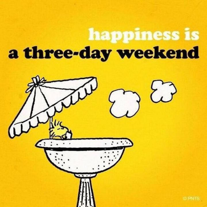 """""""Happiness is a three-day weekend."""""""