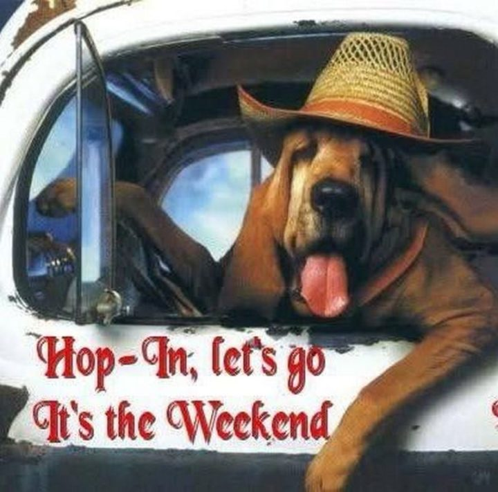 """""""Hop-in, let's go. It's the weekend."""""""