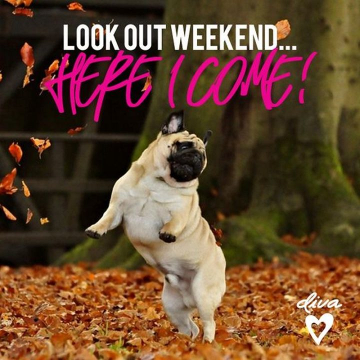 """""""Look out weekend...Here I come!"""""""