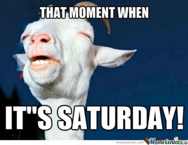 """""""That moment when it's Saturday!"""""""