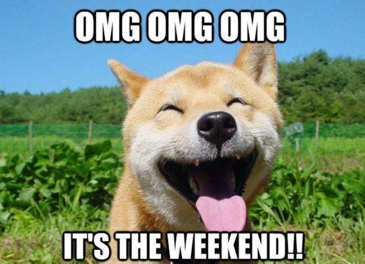 """OMG OMG OMG, It's the weekend!!"