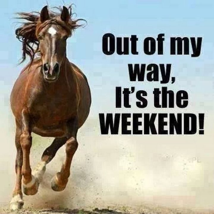 """""""Out of my way, it's the weekend!"""""""