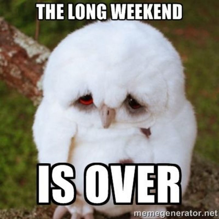 """""""The long weekend is over."""""""