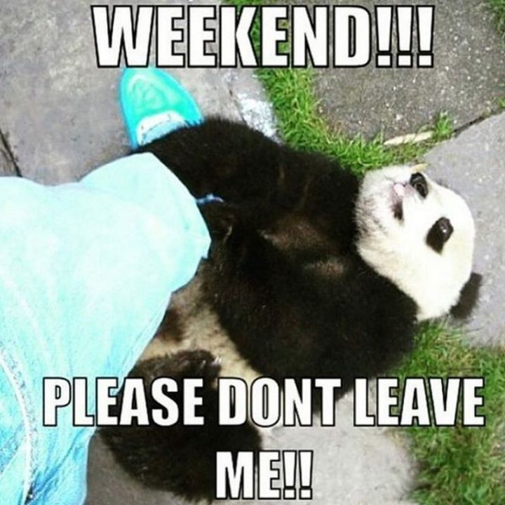 """""""Weekend!!! Please don't leave me!!"""""""