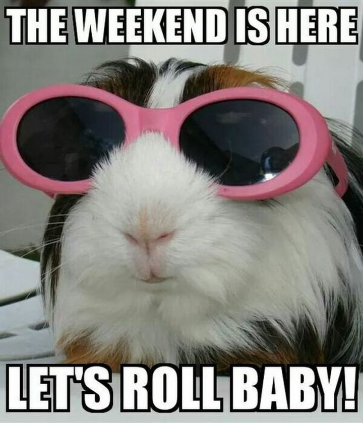 """""""The weekend is here. Let's roll baby!"""""""