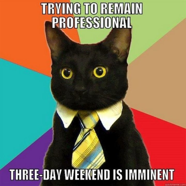 """""""Trying to remain professional. Three-day weekend is imminent."""""""