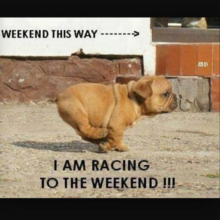 """""""I am racing to the weekend!!!"""""""
