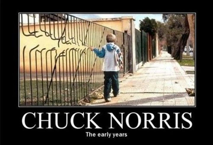 """""""Chuck Norris: The early years."""""""