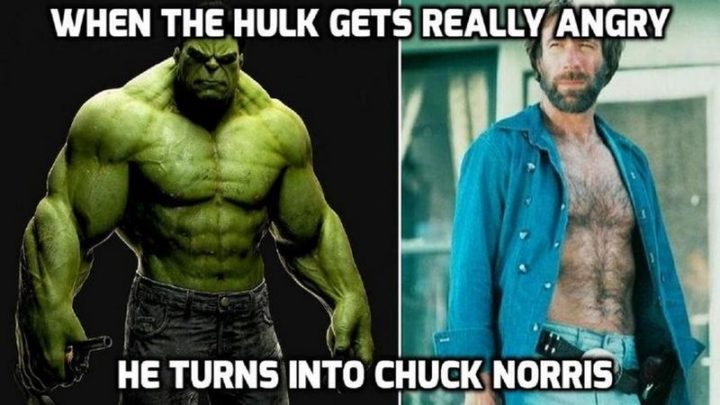 """""""When the Hulk gets really angry, he turns into Chuck Norris."""""""