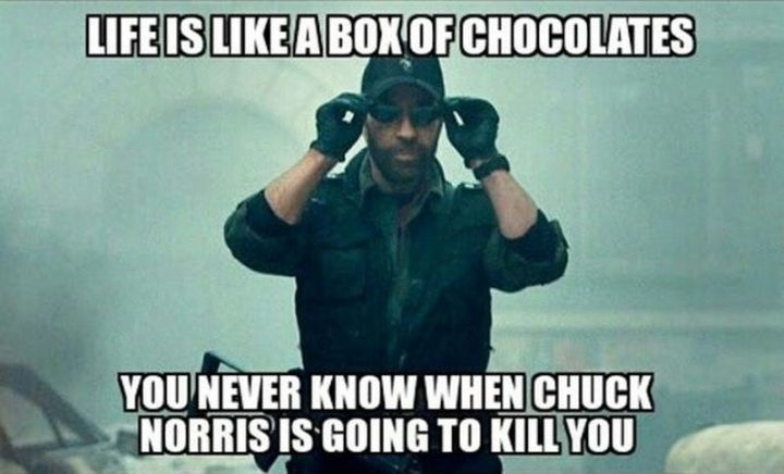 """""""Life is like a box of chocolates, you never know when Chuck Norris is going to kill you."""""""