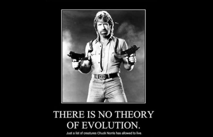 """""""There is no theory of evolution. Just a list of creatures Chuck Norris has allowed to live."""""""