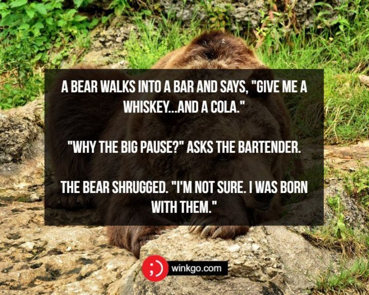 """71 Two-Line Funny Jokes - A bear walks into a bar and says, """"Give me a whiskey...and a cola."""" """"Why the big pause?"""" asks the bartender. The bear shrugged. """"I'm not sure. I was born with them."""""""