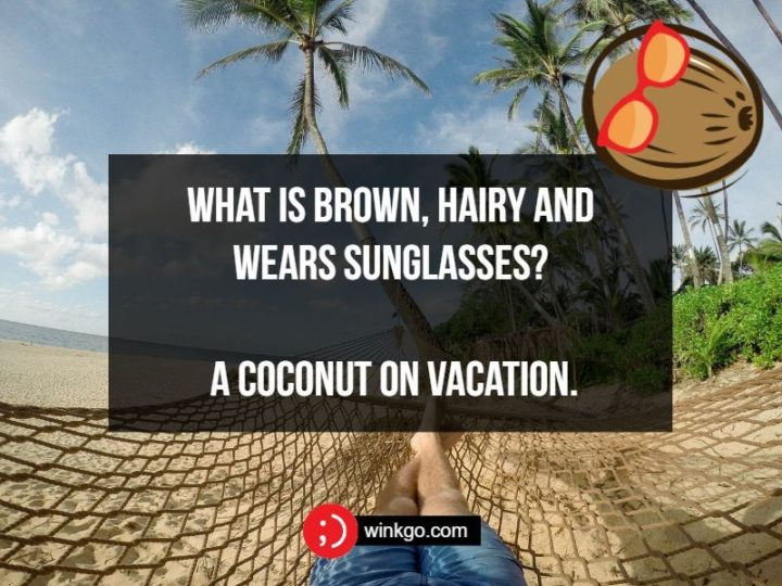 71 Two-Line Funny Jokes - What is brown, hairy and wears sunglasses? A coconut on vacation.