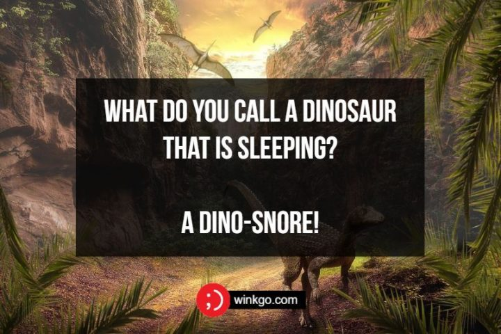 71 Two-Line Funny Jokes - What do you call a dinosaur that is sleeping? A dino-snore!