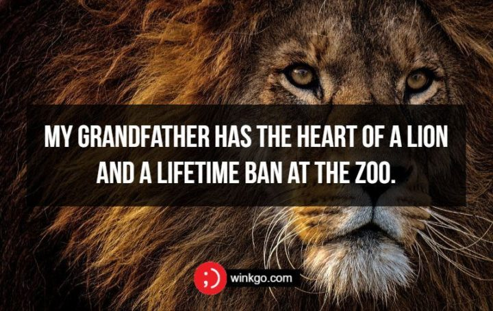 My grandfather has the heart of a lion and a lifetime ban at the zoo.