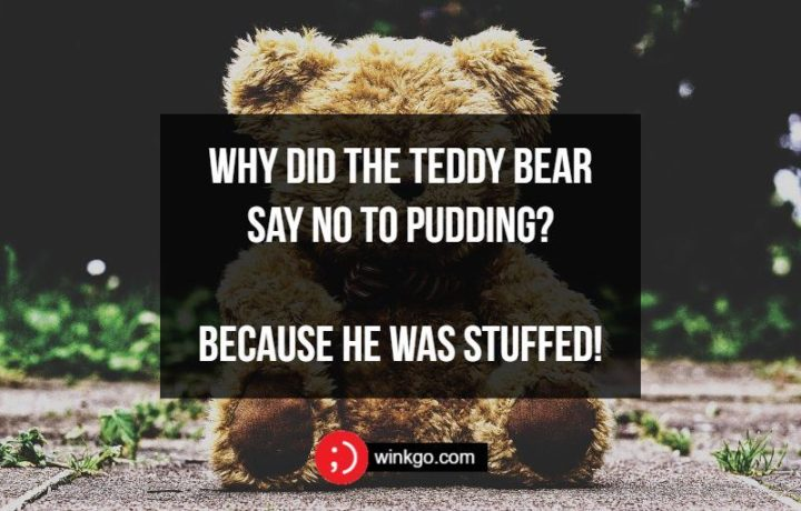 Why did the teddy bear say no to pudding? Because he was stuffed!