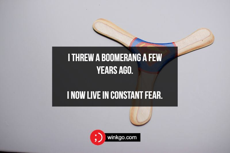 I threw a boomerang a few years ago. I now live in constant fear.