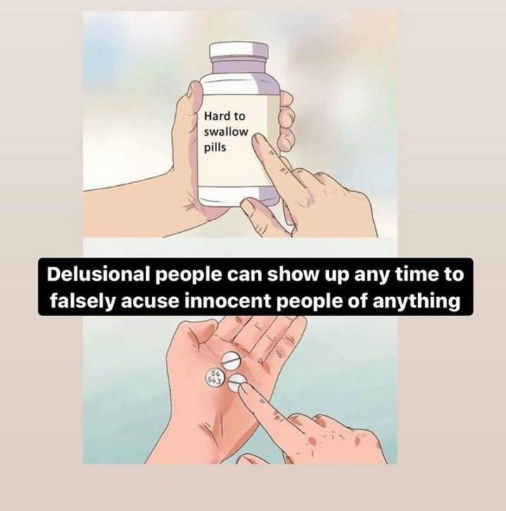 """61 """"Hard to Swallow Pills"""" Memes - """"Delusional people can show up any time to falsely accuse innocent people of anything."""""""