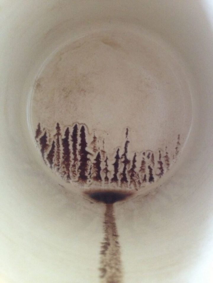 """""""I accidentally painted a silhouette of a forest in my last sip of coffee."""""""