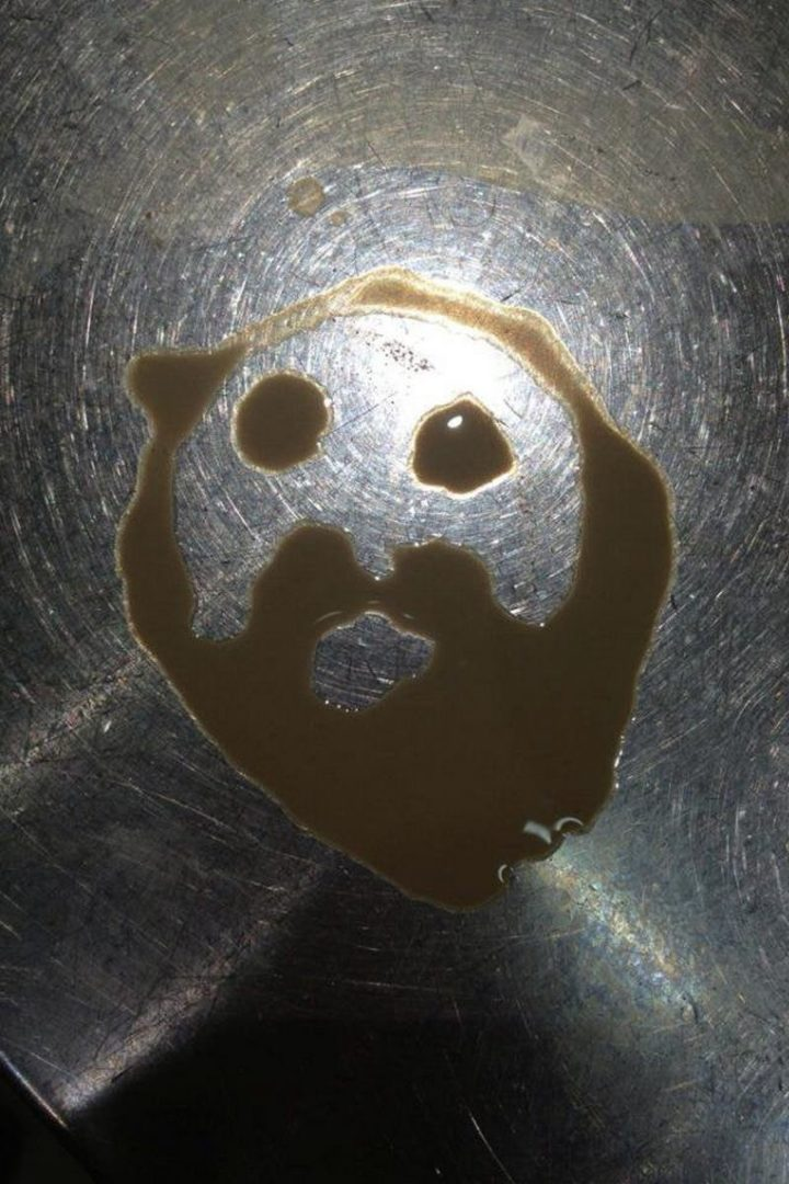 """""""Totally legitimate Jesus in my coffee spill."""""""